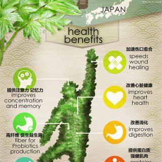 ashitaba-infographic1-320×320